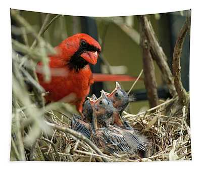 Northern Cardinal Day 8 Tapestry
