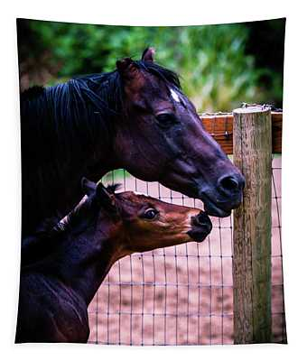 Nose To Nose Tapestry