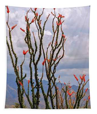 Ocotillo Blooming Under Cloudy Skies Tapestry