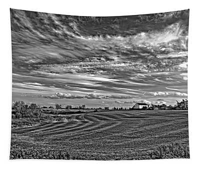 October Patterns Bw Tapestry