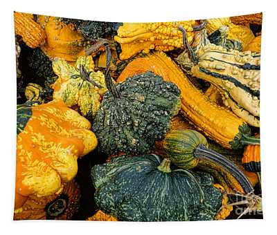Odd Gourds One Tapestry