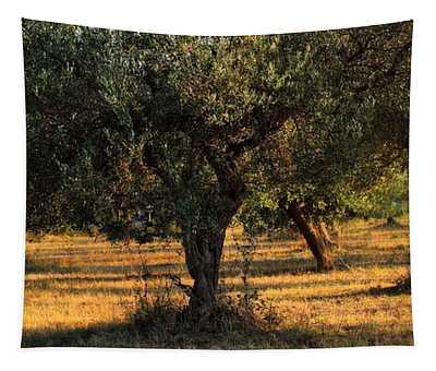 Olive Grove 3 Tapestry