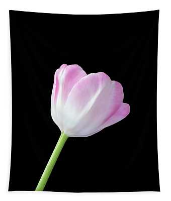 One Tulip Tapestry