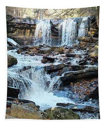 Oneida Falls 4 - Ricketts Glen Tapestry