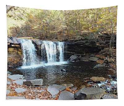 Oneida Falls - Ricketts Glen Tapestry