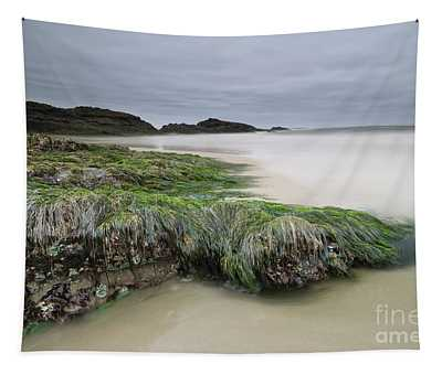 Only When It's Super Low Tide Tapestry