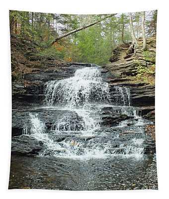 Onondaga 3 - Ricketts Glen Tapestry