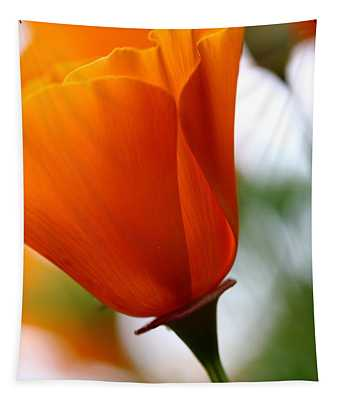 Orange California Poppy . 7d14789 Tapestry