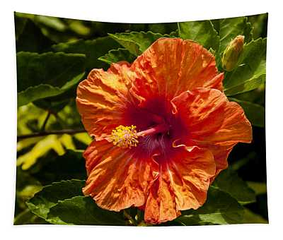 Orange Hibiscus Tapestry