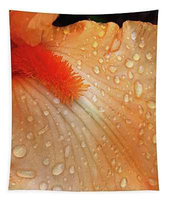 Orange Sherbet Tapestry