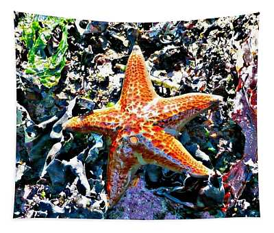 Tapestry featuring the photograph Orange Starfish by 'REA' Gallery