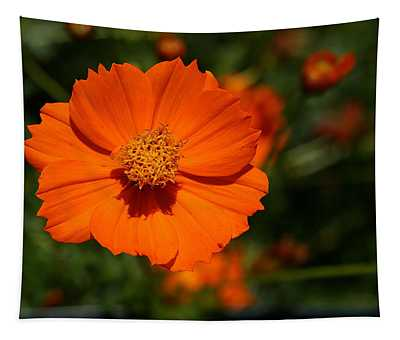 Orange Sulfur Cosmos Flower Tapestry