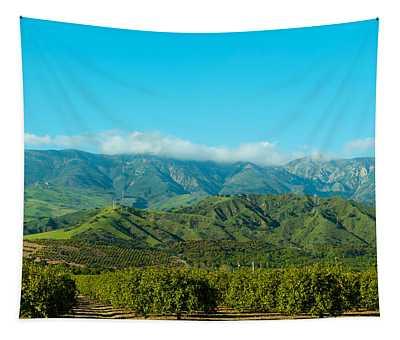 Orange Tree Grove, Santa Paula, Ventura Tapestry