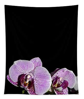 Orchid Blooms Tapestry