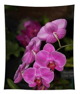 Orchids Alicia Tapestry