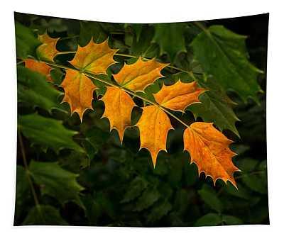 Oregon Grape Autumn Tapestry