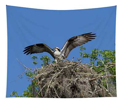 Osprey On Nest Wings Held High Tapestry