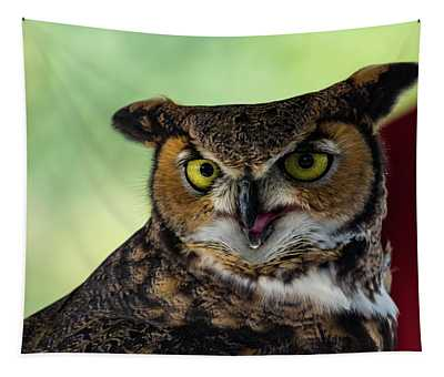 Owl Tongue Tapestry
