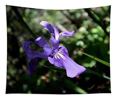 Pacific Coast Iris Tapestry