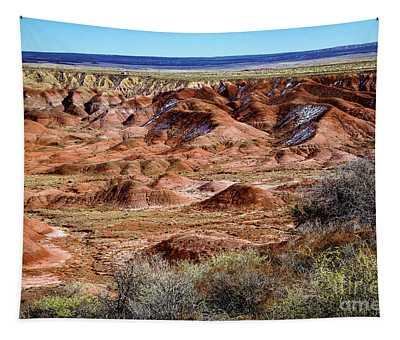 Painted Desert In Winter Tapestry