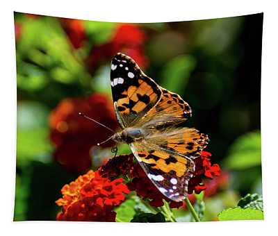 Painted Lady Butterfly Tapestry