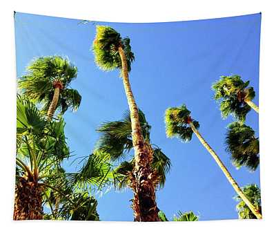 Palm Trees Looking Up Tapestry