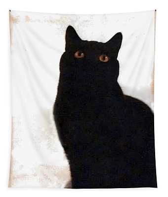 Panther The British Shorthair Cat Tapestry