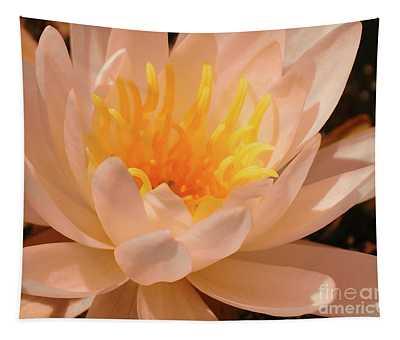 Pastel Pleasures  Tapestry