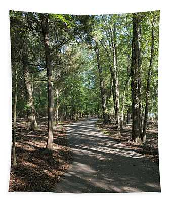 Path Around Lake Tapestry