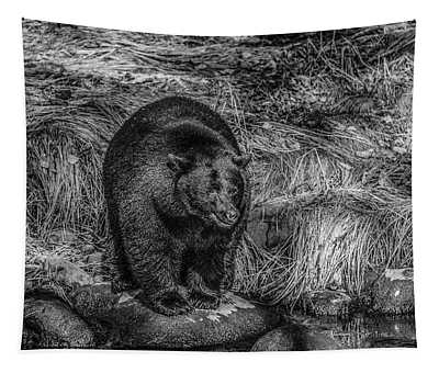 Patient Black Bear Tapestry