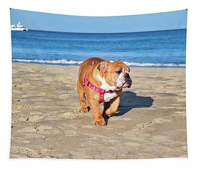 Peanut On The Beach Tapestry