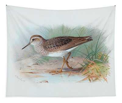 Pectoral Sandpiper Tapestry