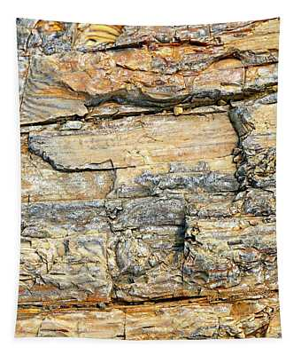 Petrified Wood Nature Abstract Tapestry