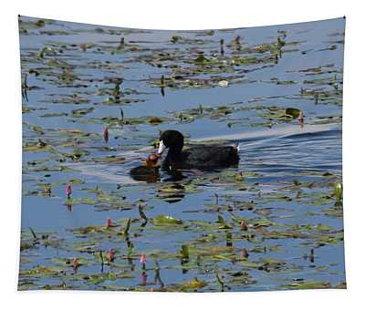 Pied Billed Grebe Lake John Swa Co Tapestry