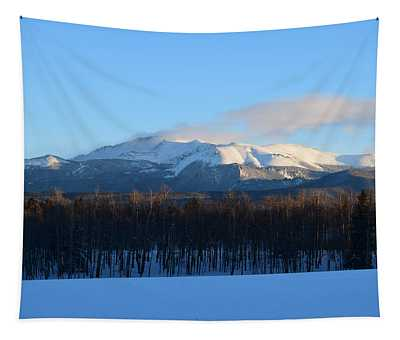 Pikes Peak From Cr511 Divide Co Tapestry
