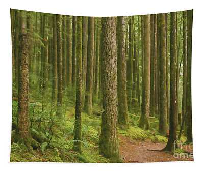 Pines Ferns And Moss Tapestry