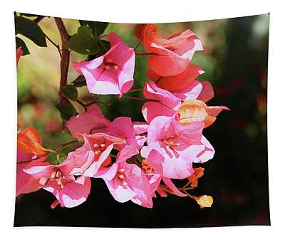Pink Bougainvillia- Photograph By Linda Woods Tapestry