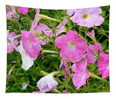Pink Petunia Flower 5 Tapestry