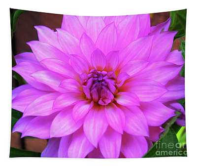 Pink Purple Dahlia Flower Tapestry