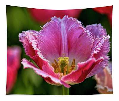 Pink Tulip  Tapestry