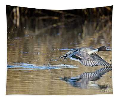 Pintail Departure Tapestry
