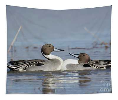 Pintails Tapestry