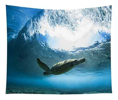 Pipe Turtle Glide Tapestry