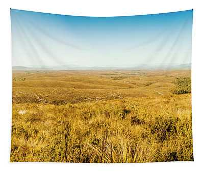Plain Plains Tapestry