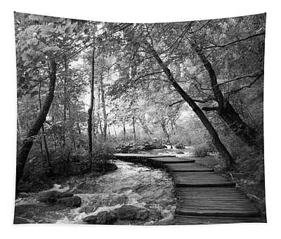 Plitvice In Black And White Tapestry