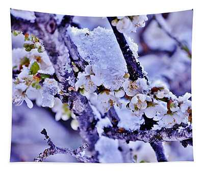 Plum Blossoms In Snow Tapestry