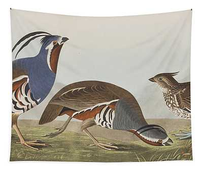 Plumed Partridge Tapestry