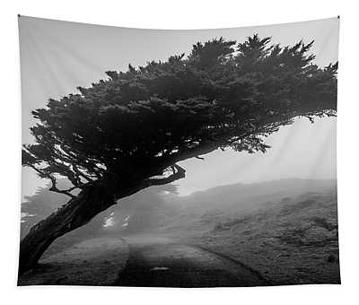 Point Reyes Fog Black And White Tapestry