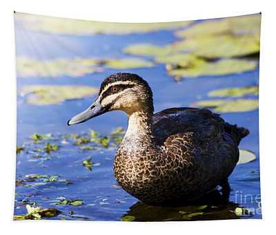 Pond Duck Tapestry