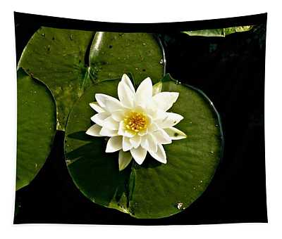 Pond Lily Tapestry